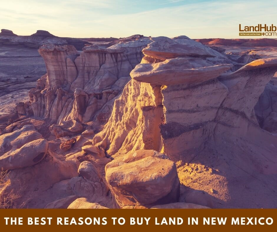 The Best Reasons to Buy Land in New Mexico