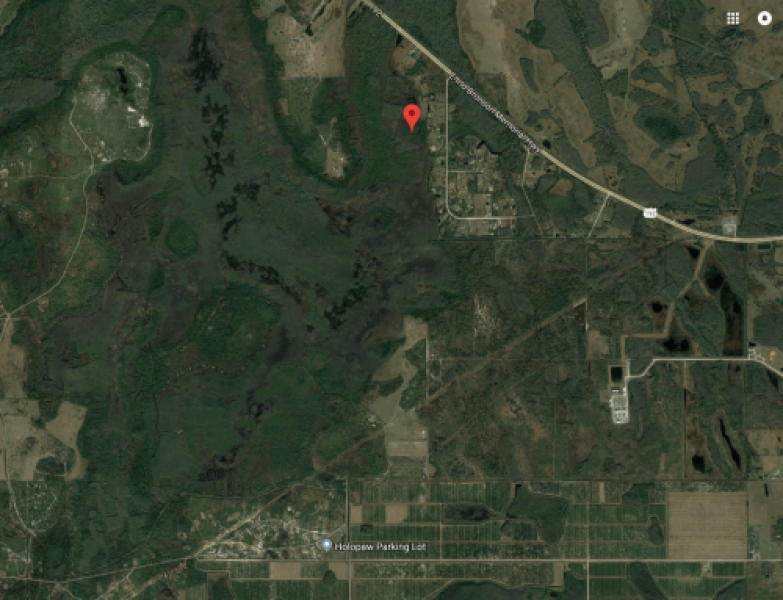 Holopaw Groves Road, Holopaw, Florida 34771, ,Land - Undeveloped,For Sale,Holopaw Groves Road,2283