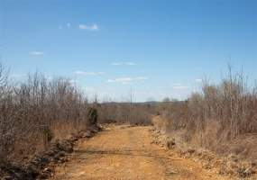 Lot 22 Southwind Ranch,Bunker Hill,Tennessee 37096,Lot 22 Southwind Ranch,139112