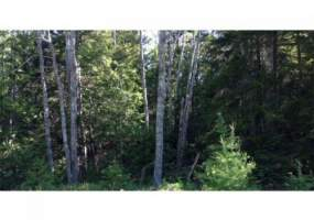 Lot 56-1 Number 9 RD,Cutler,Maine 04652,Lot 56-1 Number 9 RD,2646