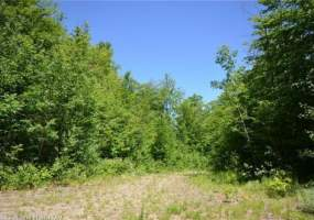 Maine-Land-for-Sale-in-Avon