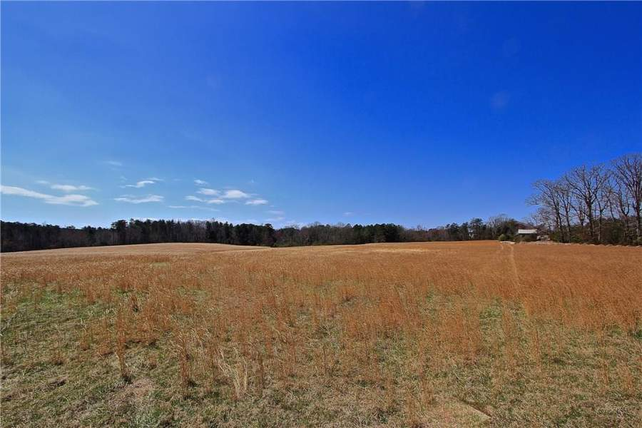 7960 NC Highway 65, Summerfield, North Carolina 27358, ,Land - Undeveloped,For Sale,7960 NC Highway 65,199639