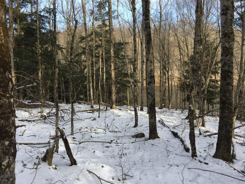 Owl Pond Rd, Hermon, NY 13652, Hermon, New York 13652, ,Hunting Land,Under Contract,Owl Pond Rd, Hermon, NY 13652,200120