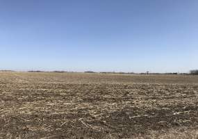 Graettinger, IA 51342, USA, Graettinger, Iowa 51342, ,Farm,For Sale,Graettinger, IA 51342, USA,200930