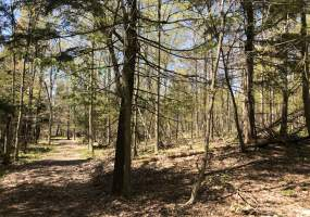 Lot 18 Berry Dr, Lorraine, New York 13605, ,Recreational Land,For Sale,Lot 18 Berry Dr,228524