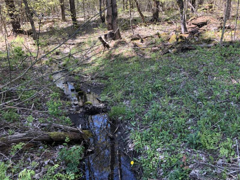 Lot 18 Berry Dr, Lorraine, New York 13605, ,Recreational Land,Under Contract,Lot 18 Berry Dr,228524
