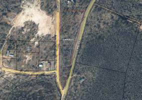 Holley Timber Rd. Cottondale, FL 32431, Cottondale, Florida 32431, ,Land,For Sale,Holley Timber Rd. Cottondale, FL 32431,230348