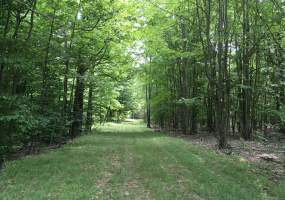 27 Eels Rd, Russell, New York 13684, ,Hunting Land,For Sale,27 Eels Rd,231643
