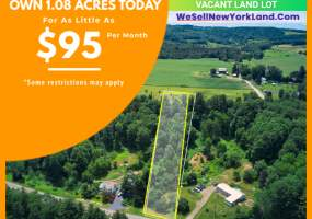 9585 State Route 79, Lisle, New York 13797, ,Land,For Sale,9585 State Route 79,241604