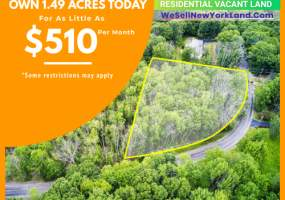 1300 Holly Hill Rd, Vestal, New York 13850, ,Land,For Sale,1300 Holly Hill Rd,242024