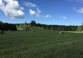 Co Rd 21, Hermon, New York 13652, ,Land,For Sale,Co Rd 21,243105
