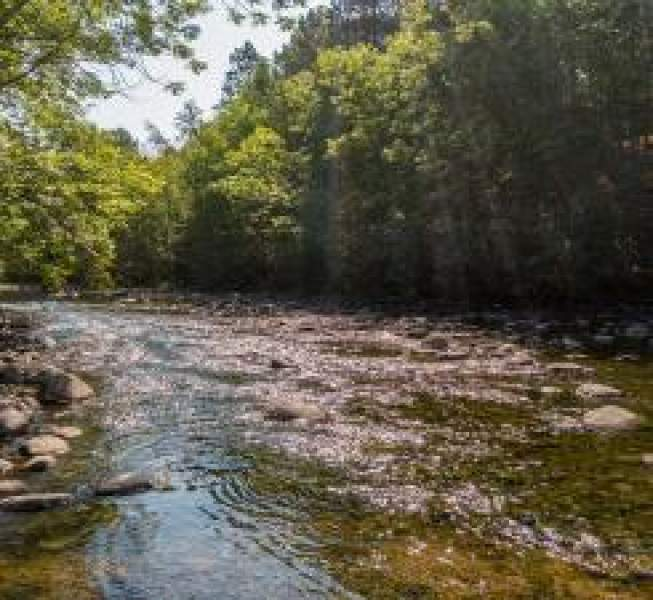 Awesome, clean, rocky river bottom awaits the lucky buyer of this property.