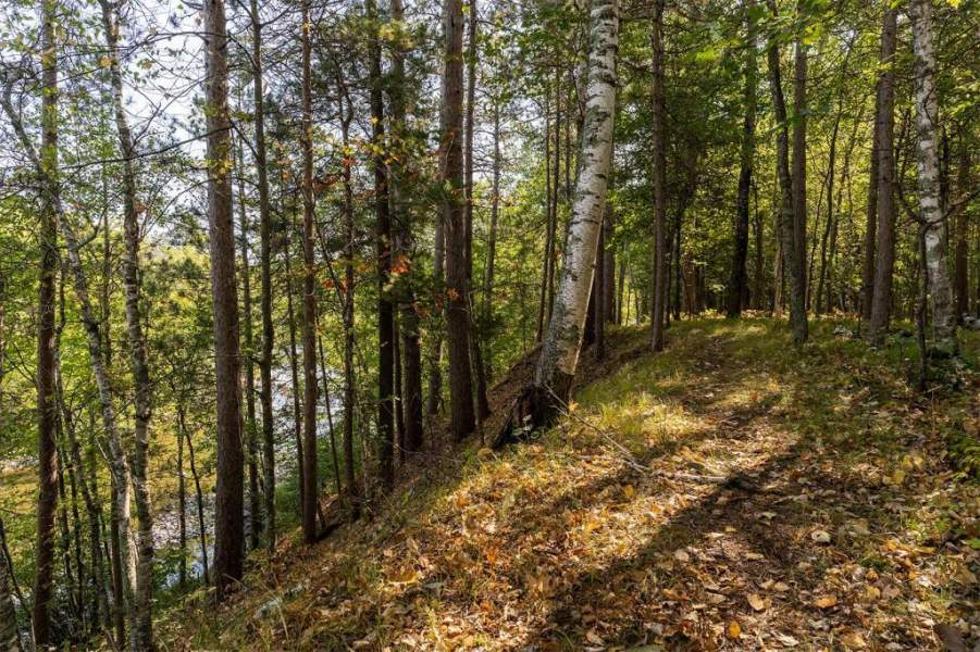 More than 800 feet of Pine River frontage hugs the north edge of the property.