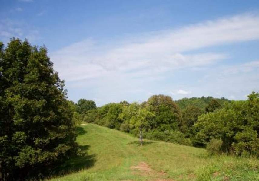 Lot 6 Heritage Hollow,Spencer,West Virginia 25276,Lot 6 Heritage Hollow,4628