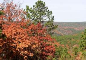 Lot 73B. Stone Creek Ranch,Wilburton,Oklahoma 74578,Lot 73B. Stone Creek Ranch,4690