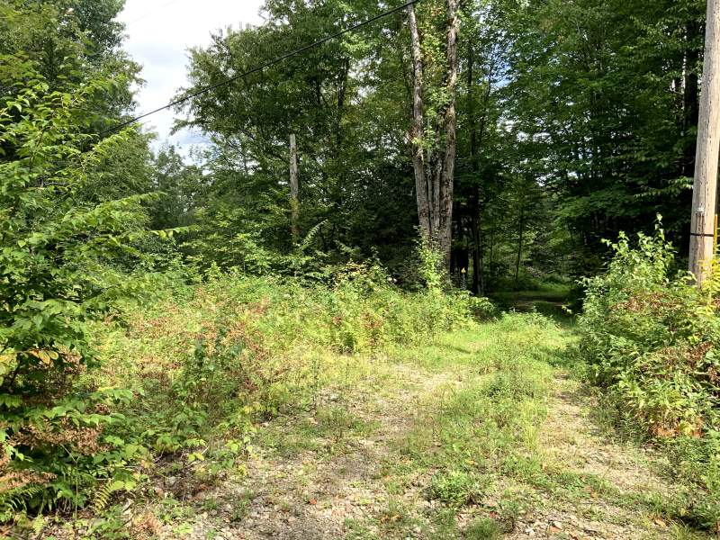 River Rd, Camden, New York 13316, ,Hunting Land,For Sale,River Rd,394557