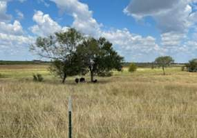 119 State Highway 119, Stockdale, Texas 78160, ,Farm,For Sale,119 State Highway 119,454549