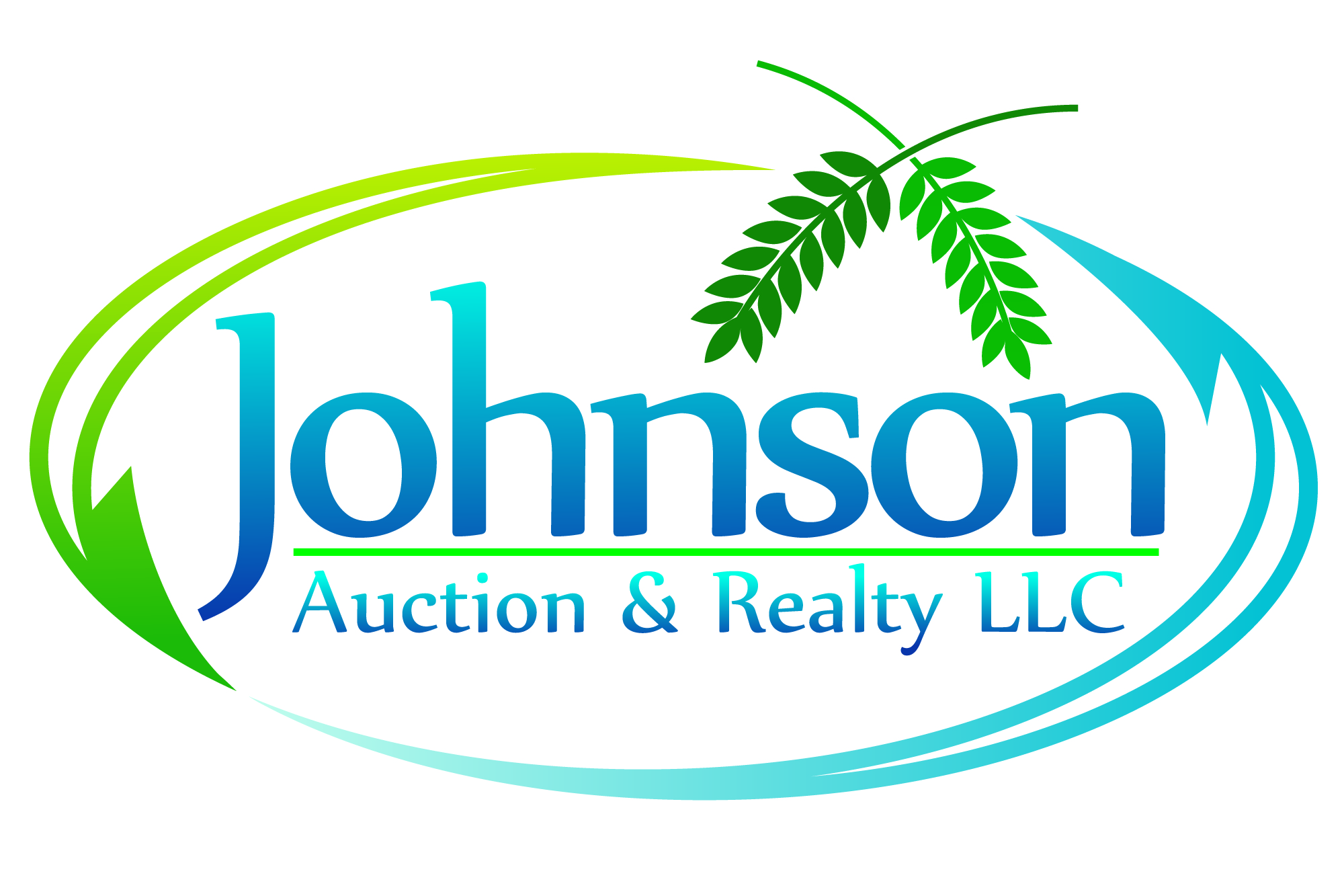 Johnson Auction and Realty LLC